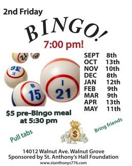 Bingo flyer 2017 pdf